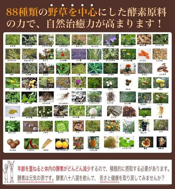 酵素八十八選-野草